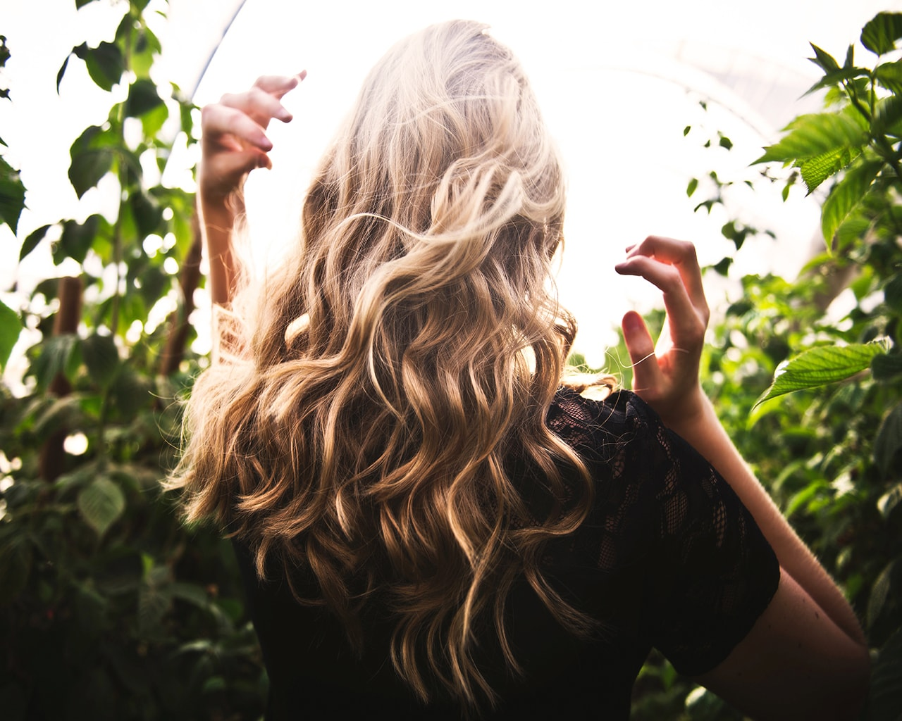 woman, hair, back, blonde