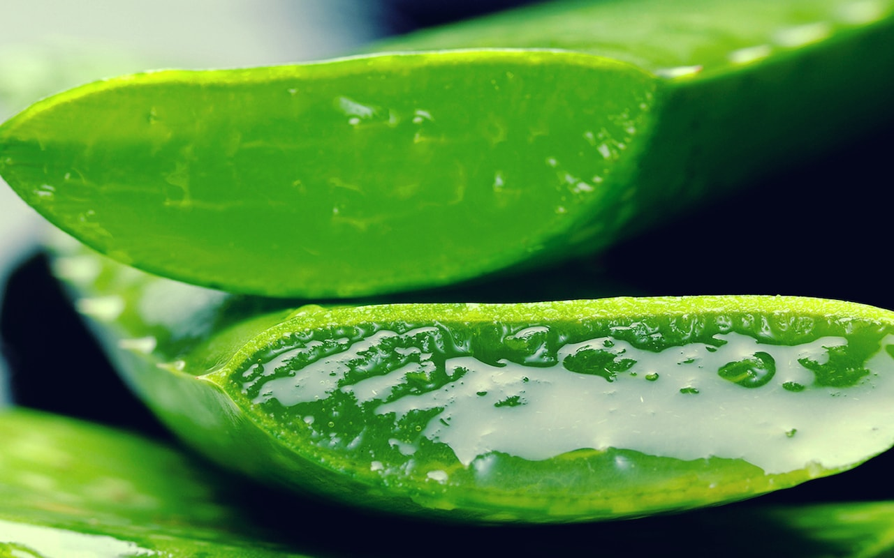 Benefits of Aloe Vera Juice: Is This Natural Tonic Right for You?